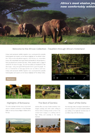 website design cape town